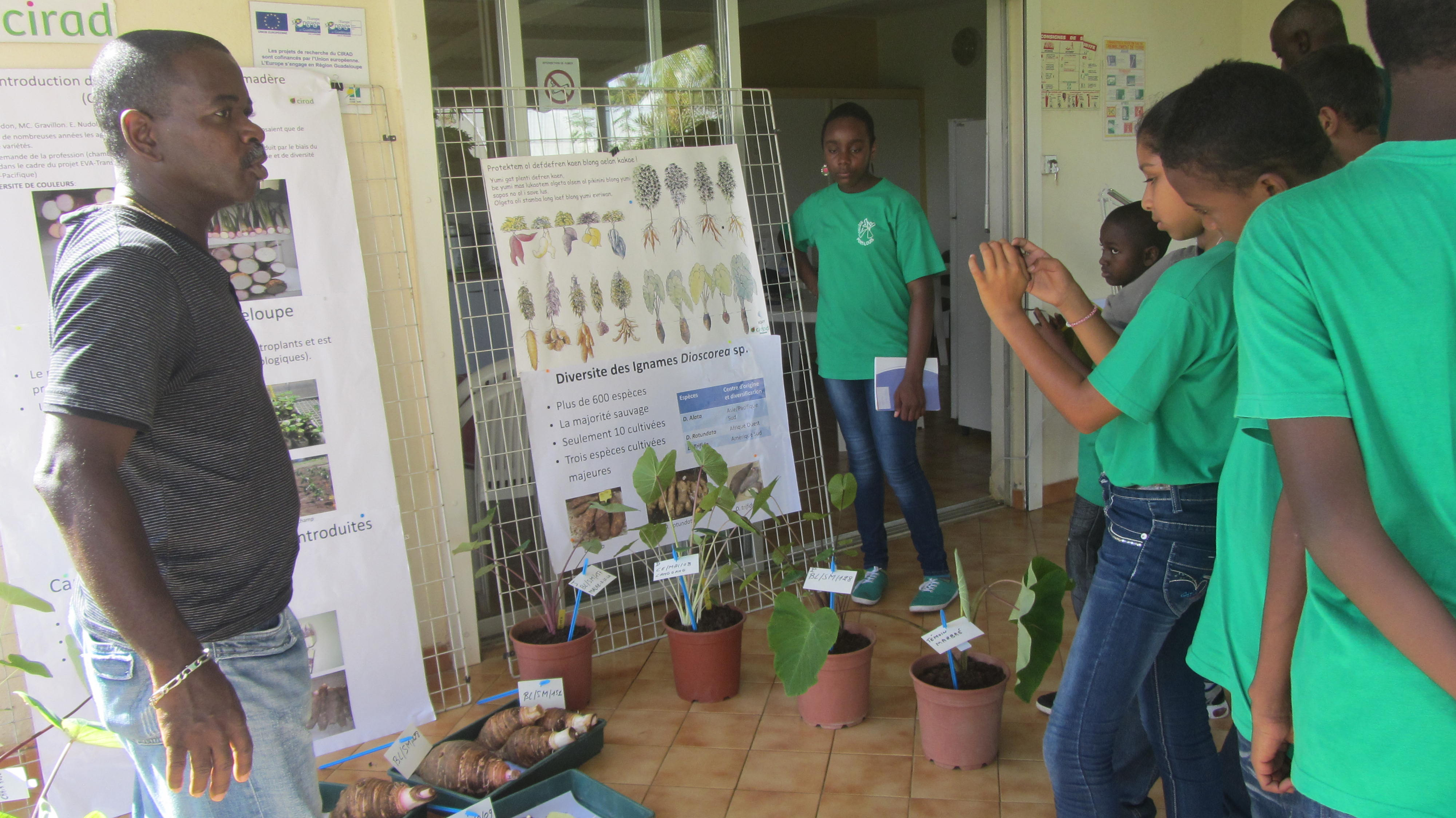 f 234 te de la science 2014 2014 news cirad regional office